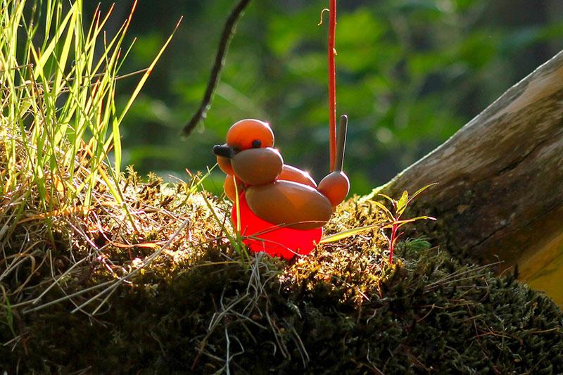 balloon birds by terry cook 3 Balloon Birds Caught in Their Natural Habitat