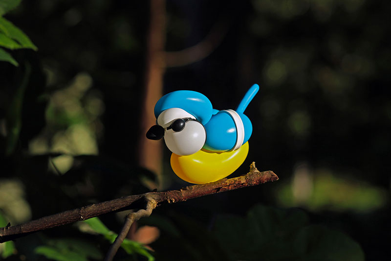 Balloon Birds Caught in Their NaturalHabitat