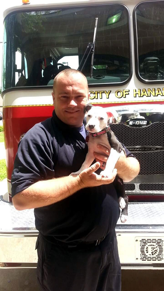 jake the puppy saved from a fire that went on to become a firefighter 7 Jake, the Puppy Saved From a Fire, that Went On To Become a Firefighter