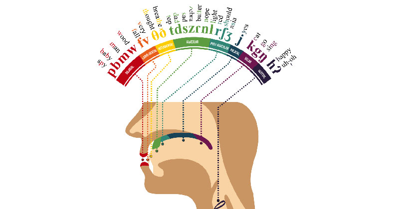 A Phonetic Map (English) of the Human Mouth