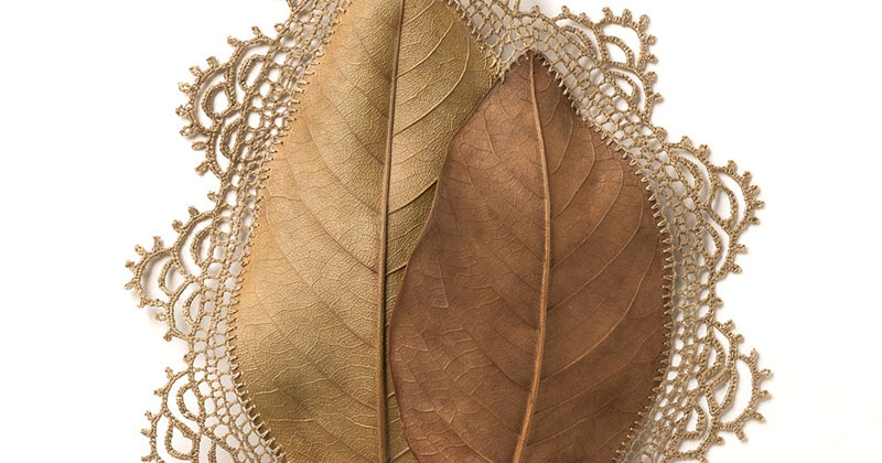 Artist Crochets New Life Into Fallen Leaves