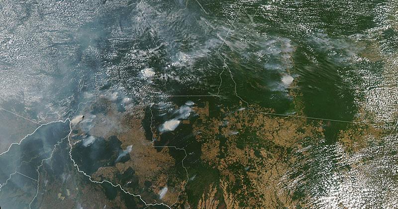 The Amazon isBurning