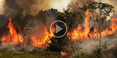 A Chilling Compilation of the Fires Currently Raging Across the Amazon