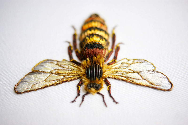 hand emroidered animals by laura baverstock 3 Stunning Animals Embroidered by Hand Using Colored and Metallic Thread