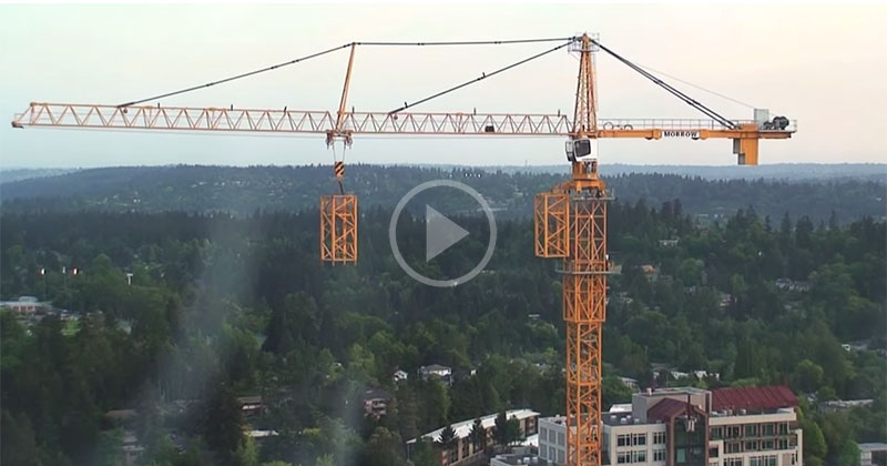 This is a Timelapse of a Crane Building Itself