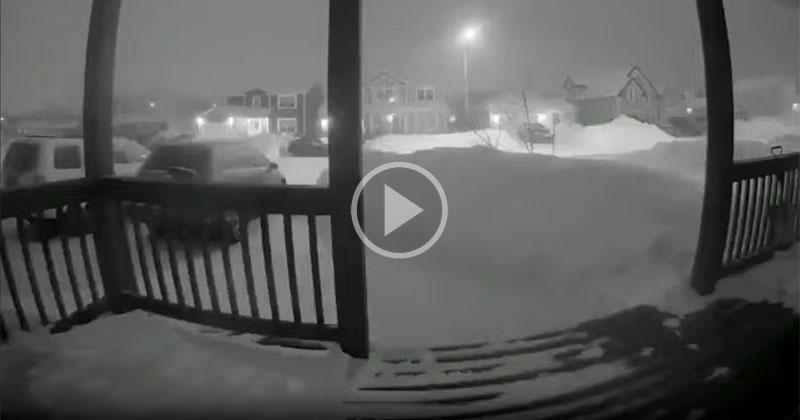 Video Doorbell Captures Historic 24 Hour Snowfall in Newfoundland