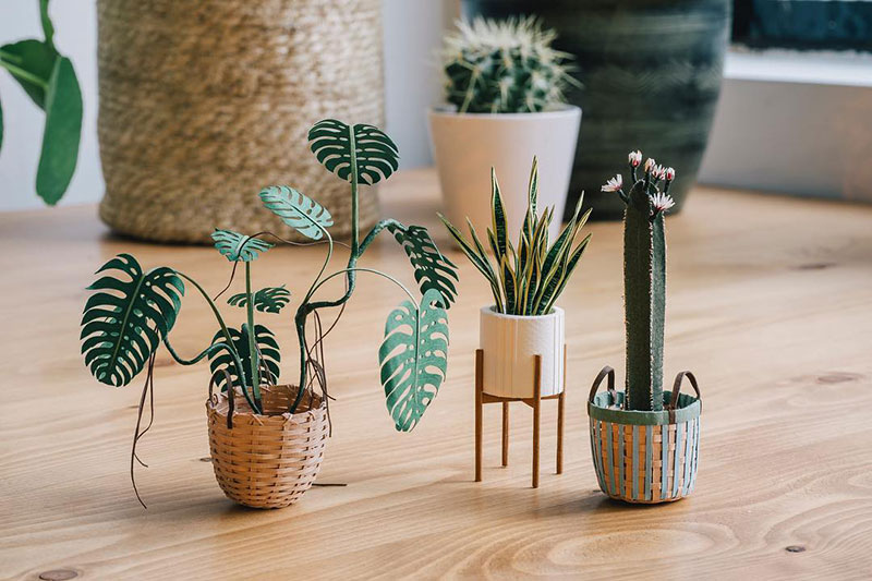 miniature paper potted plants by raya sader bujana 2 These Miniature Potted Plants Made from Paper are Just Adorable