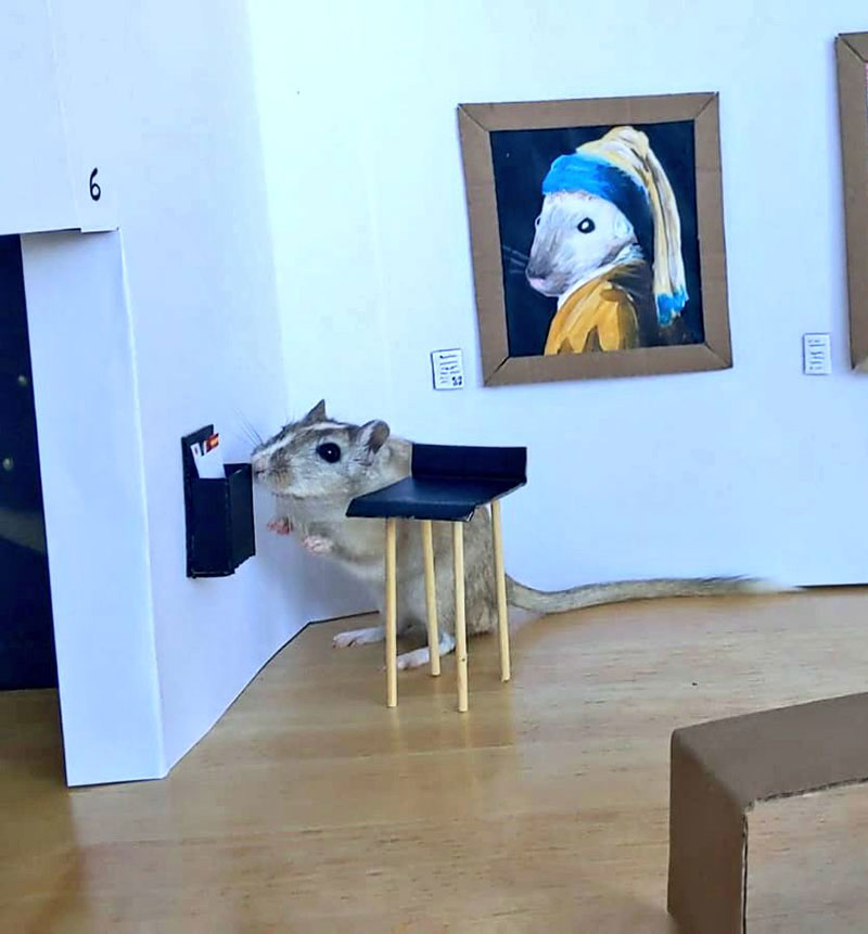 couple makes miniature art museum for their gerbils 3 This Couple Made a Miniature Art Museum for their Gerbils and its the Best
