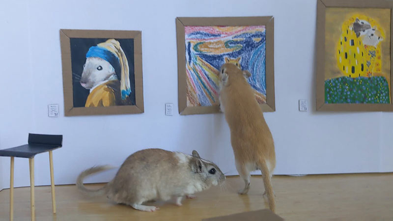 couple makes miniature art museum for their gerbils 4 This Couple Made a Miniature Art Museum for their Gerbils and its the Best
