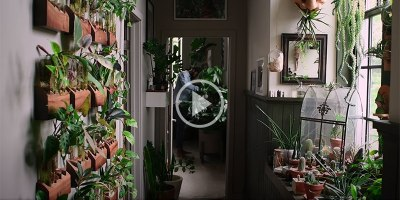 Kinda Obsessed with this Baltimore Apartment Completely Filled with House Plants
