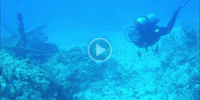 These Scuba Divers Got Pinged by a Submarine Sonar and It Sounds SoBizarre